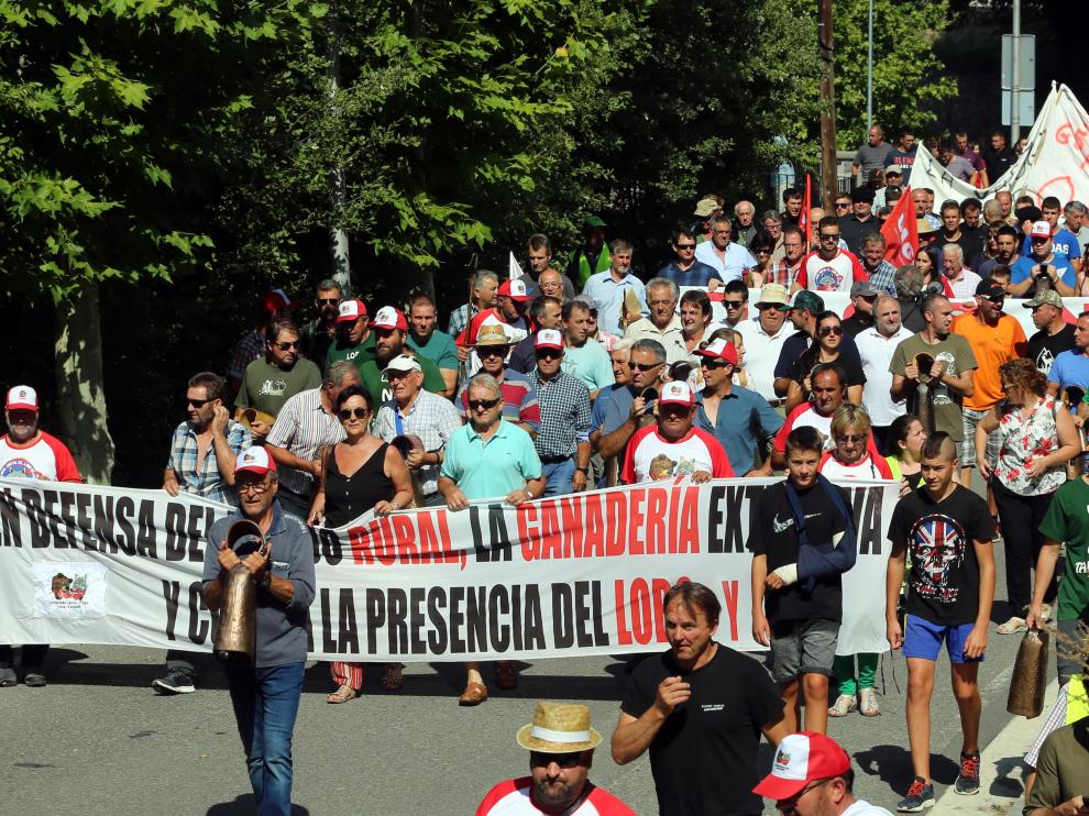 El pasado mes de agosto, una manifestación histórica contra el oso recorrió las calles de Aínsa.