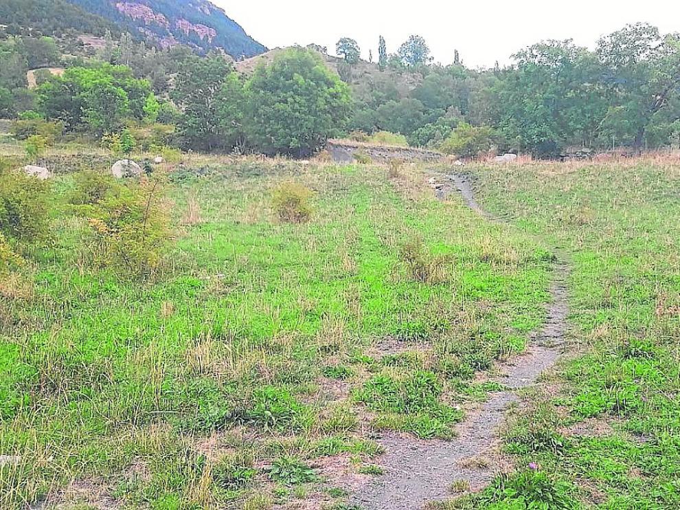 Terrenos de 'La Solaneta', donde están las parcelas afectadas.