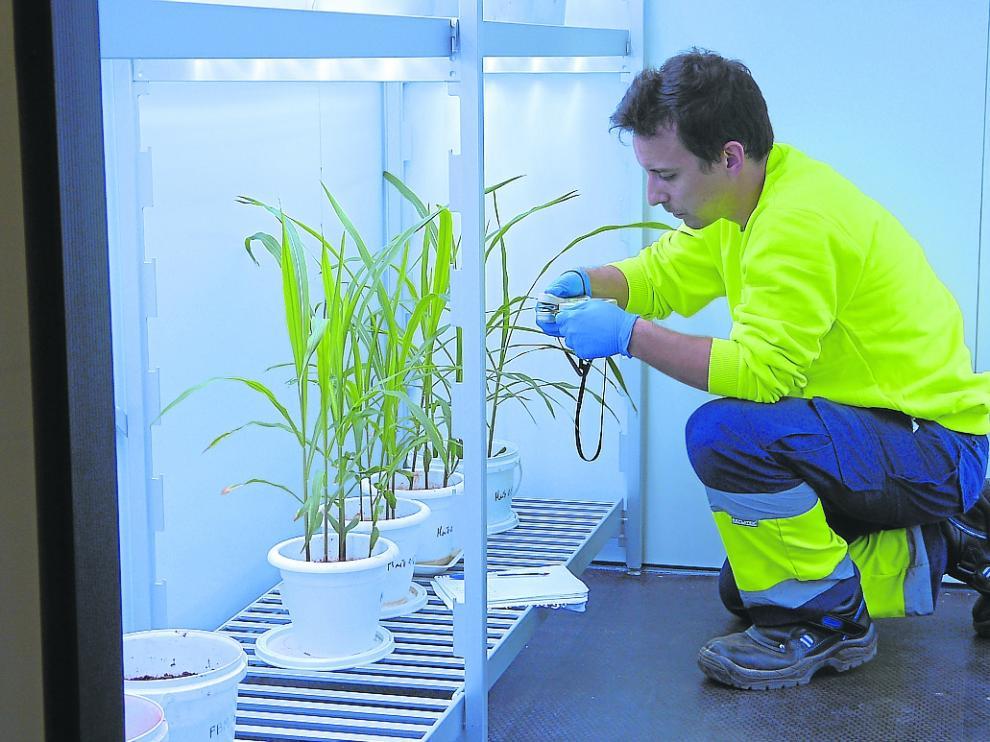 Prueba en laboratorio de Fertinagro de la tecnología para el aprovechamiento del purín como abono.