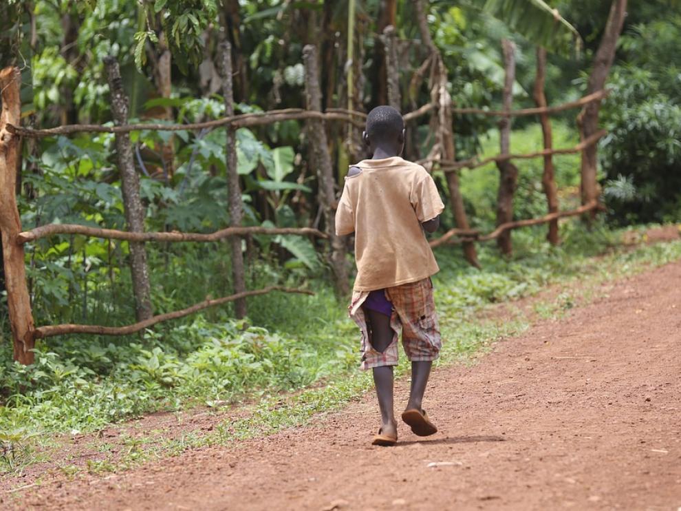 """Unicef recuerda que la comida """"un derecho fundamental y la base de un desarrollo físico y mental sano"""""""
