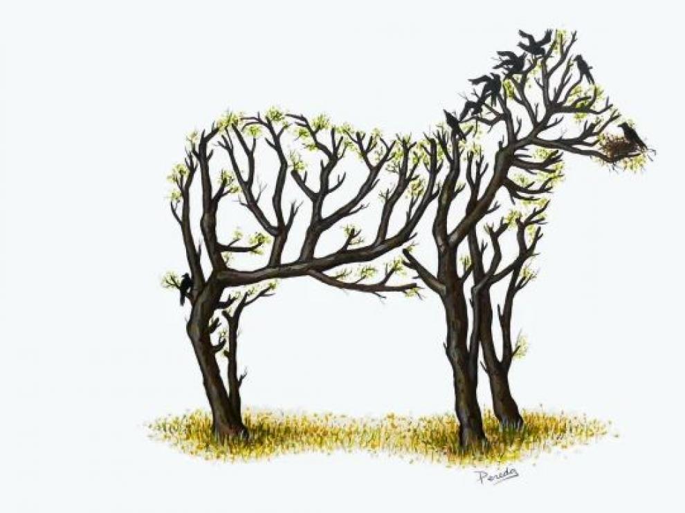 La imagen de la cebra, centro ahora de la polémica, que Adrián Pereda dibujó hace 12 años