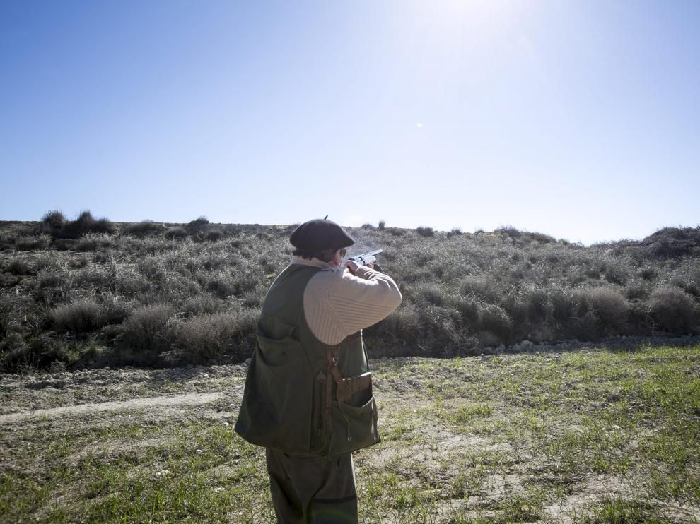 Los titulares de los cotos tienen ahora la obligación de dar caza a los conejos con el fin de minimizar los daños que causan en los cultivos. heraldo
