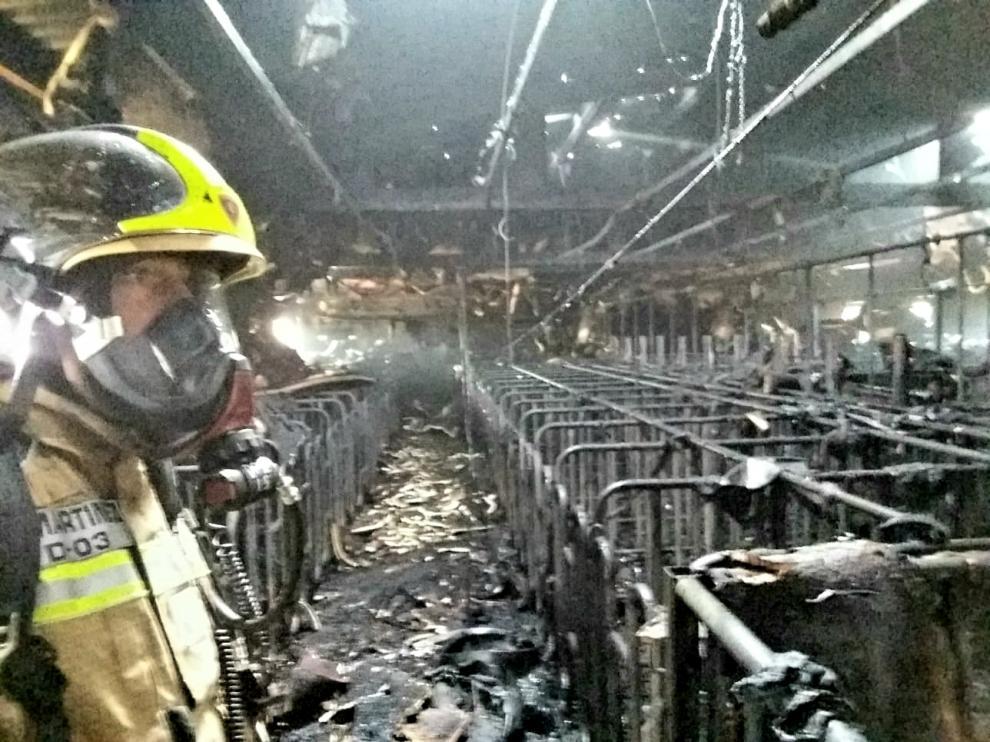Un incendio destruye parte de una granja de cerdos en Tarazona.