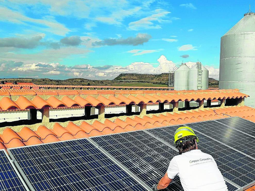 Un trabajador de Greengrouping instala paneles solares en el techo de una explotación ganadera aragonesa.