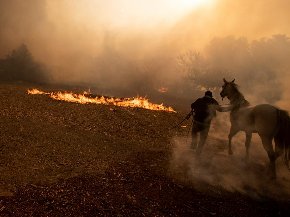 Simi Valley (United States), 30/10/2019.- Ranchers evacuate horses from a burning ranch as the Easy Fire spreads near Simi Valley, North of Los Angeles, California, USA, 30 October 2019. (Incendio, Estados Unidos) EFE/EPA/ETIENNE LAURENT Easy Fire in Simi Valley