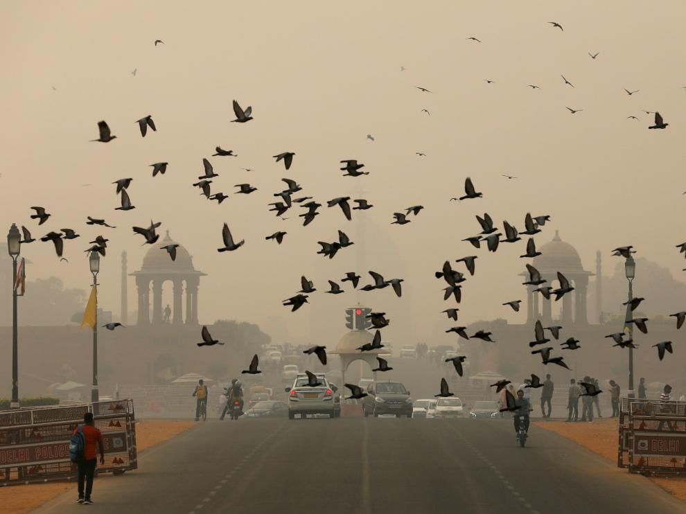 Una bandada de pájaros sobrevuela Nueva Delhi en un día en que la contaminación es visible.