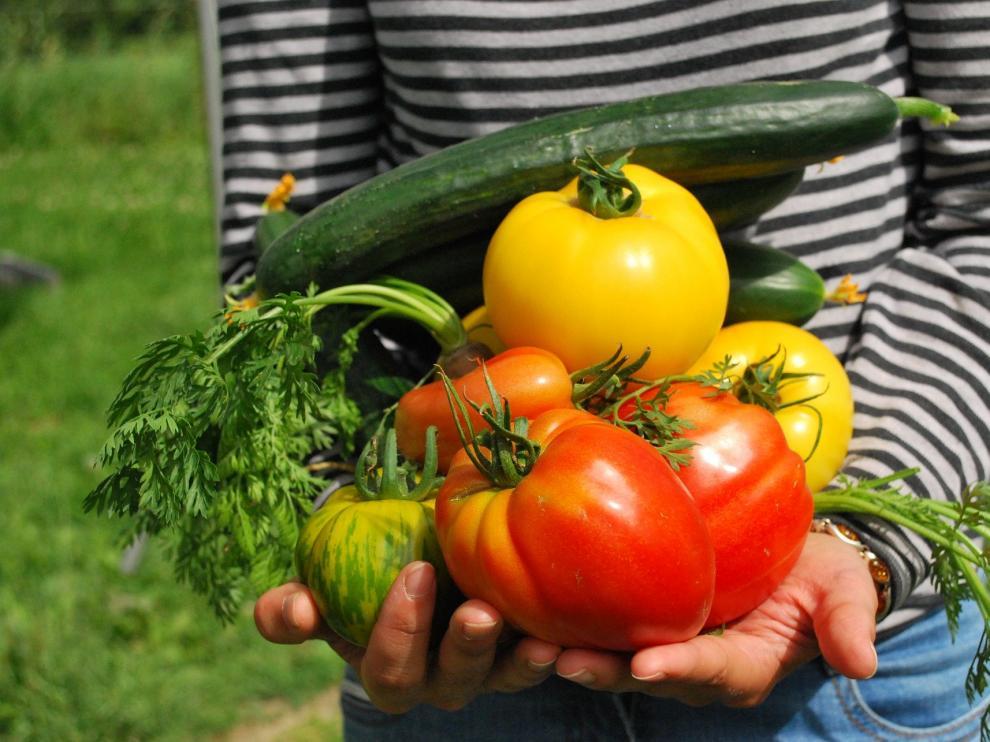 Una dieta equilibrada mejora la salud y ayuda a prevenir enfermedades.