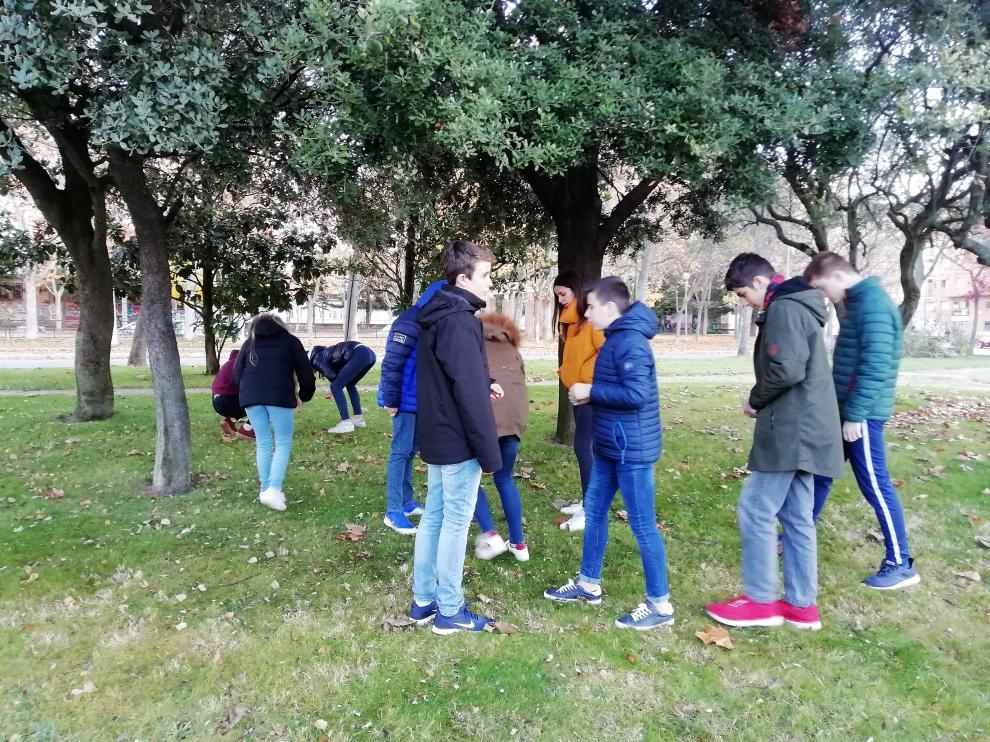 Alumnos y alumnas del IES Ramón y Cajal buscan bellotas en un parque de Huesca.