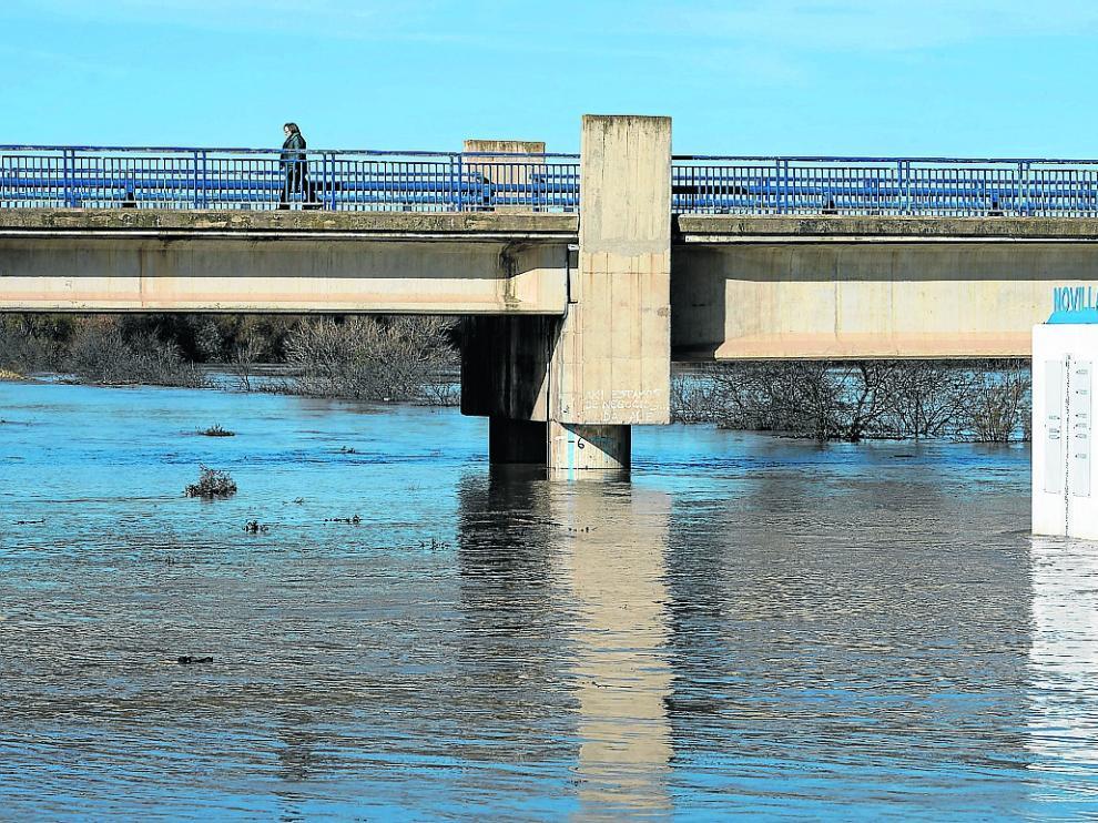 El Ebro superó los siete metros de altitud a su paso por la localidad de Novillas