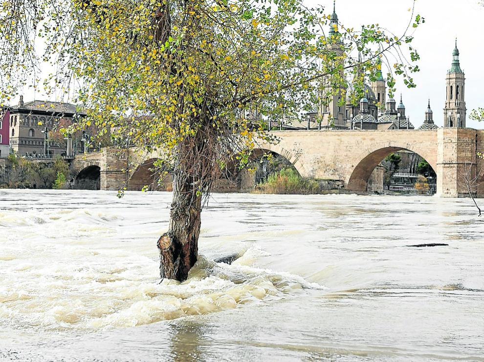 El Ebro a su paso por Zaragoza este domingo, a 850 metros cúbicos por segundo.