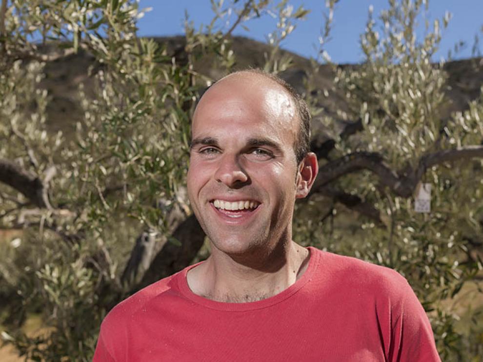 David Pradas, en el campo de olivos centenarios