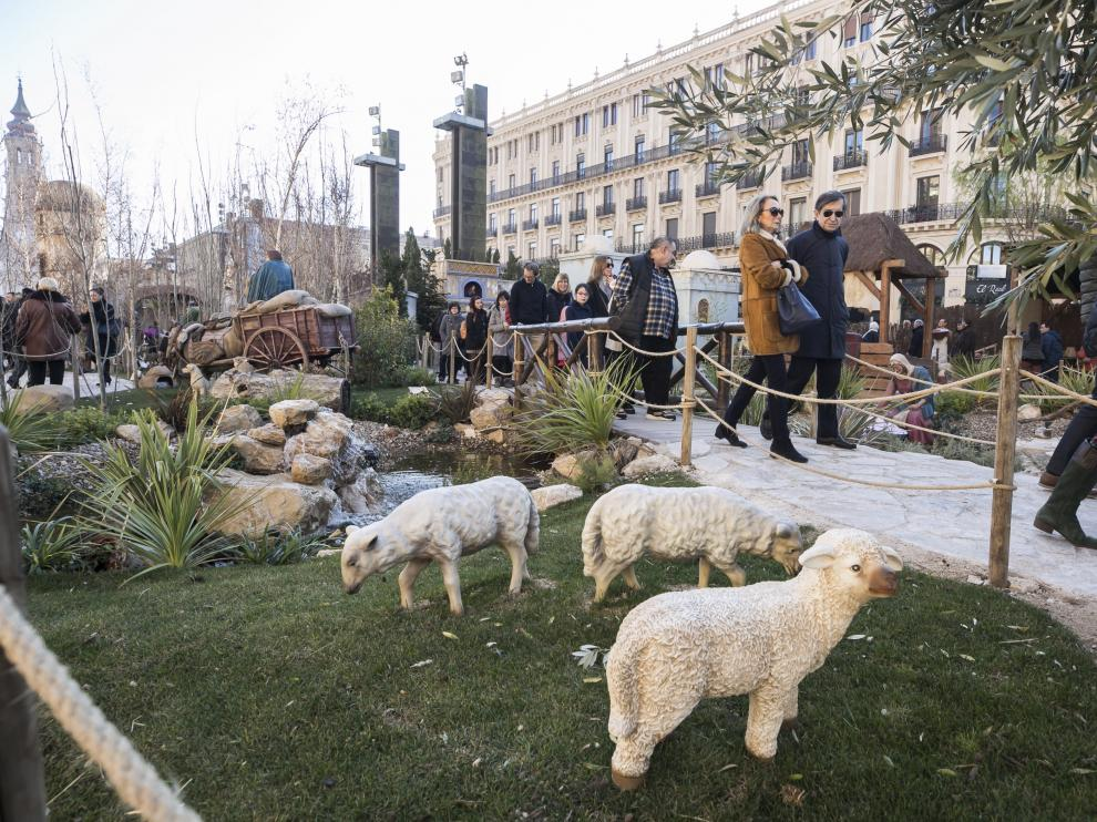 Varias ovejas en el belén de la plaza del Pilar de Zaragoza.