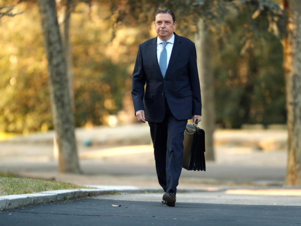 El ministro de Agricultura, Luis Planas, en una imagen de este martes.