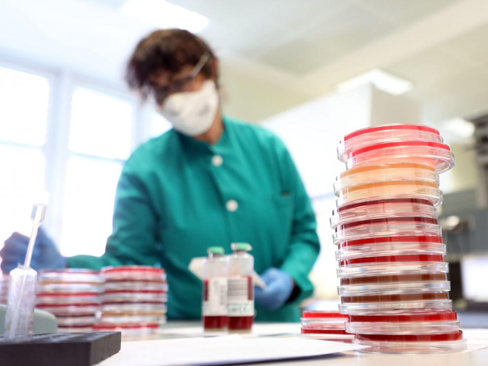 Milan (Italy), 30/01/2020.- A researcher at work in the laboratory of Clinical Microbiology, Virology and Emergency Diagnostics of the Luigi Sacco hospital in Milan, Italy, 30 January 2020. The Italian authorities are making medical research measures to deal with the possible emergency of the Coronavirus. (Italia) EFE/EPA/MATTEO BAZZI Researchers at work for possible emergency of the Coronavirus