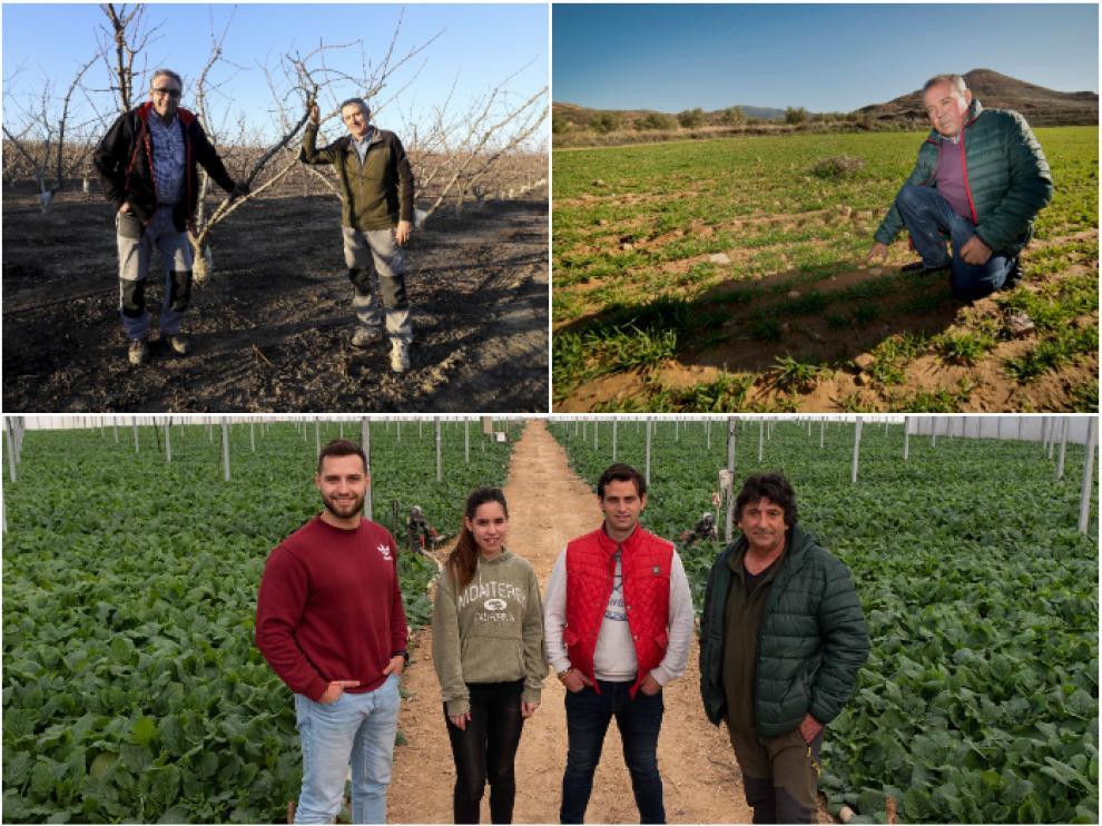 Agricultores de cereal, fruticultores y hortelanos explican sus gastos de producción en el campo.