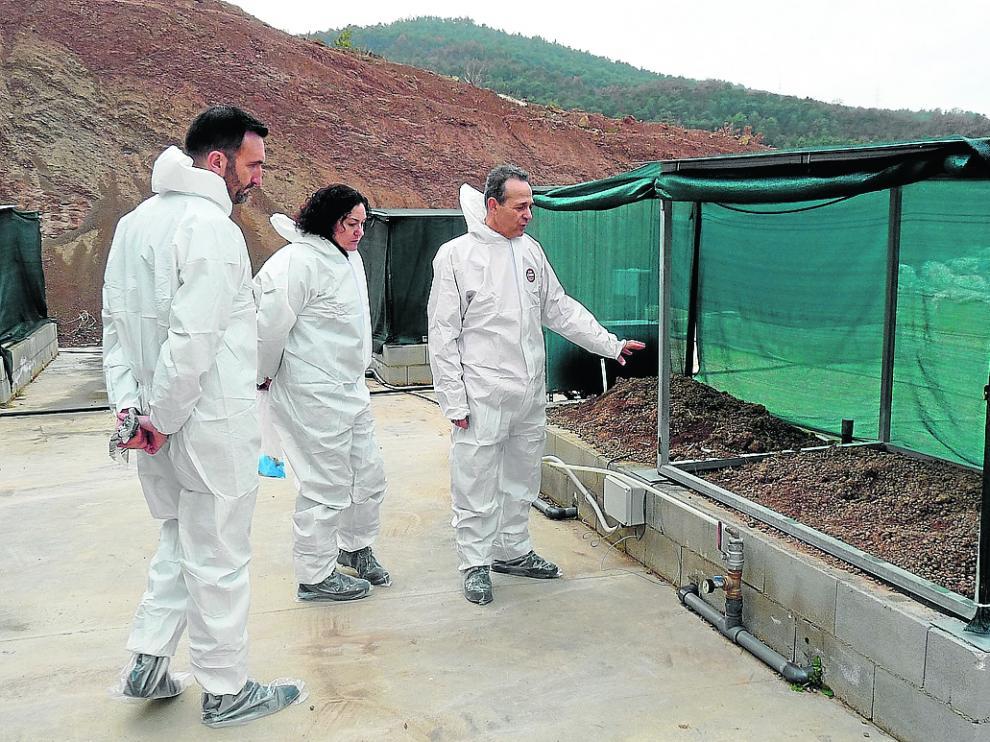 En imagen, uno de los ensayos experimentales que se han desarrollado en Bailón para eliminar el lindano.