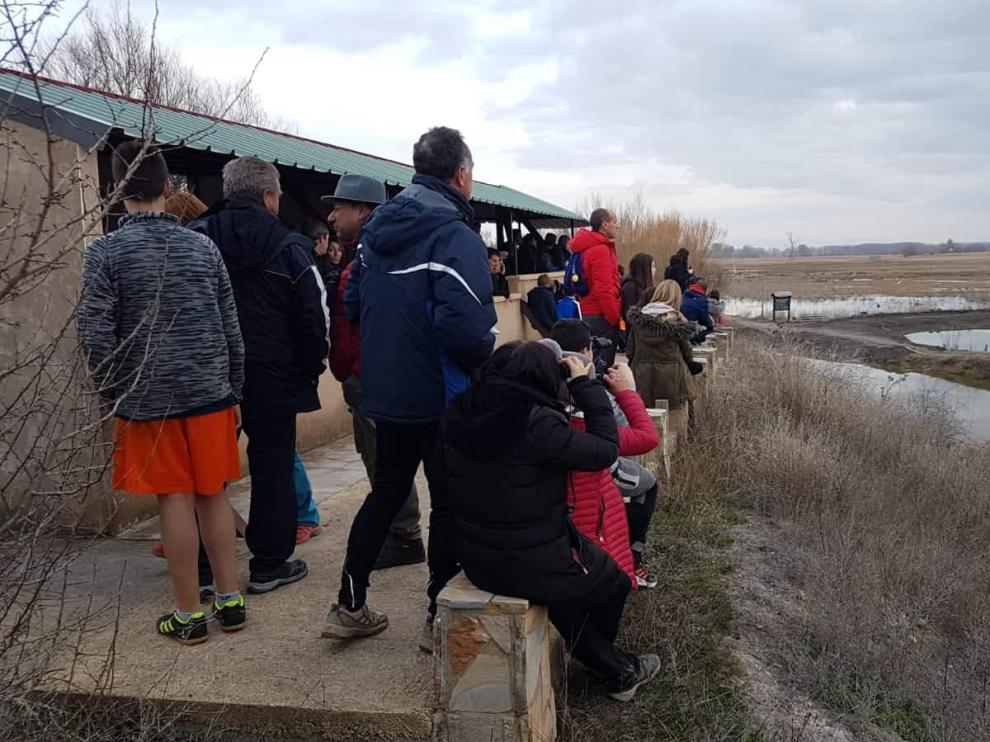 Un grupo de personas observan las grullas de la laguna del Cañizar.