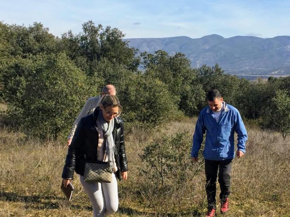 El entorno natural de Barbastro se repoblará con nuevos ejemplares arbóreos