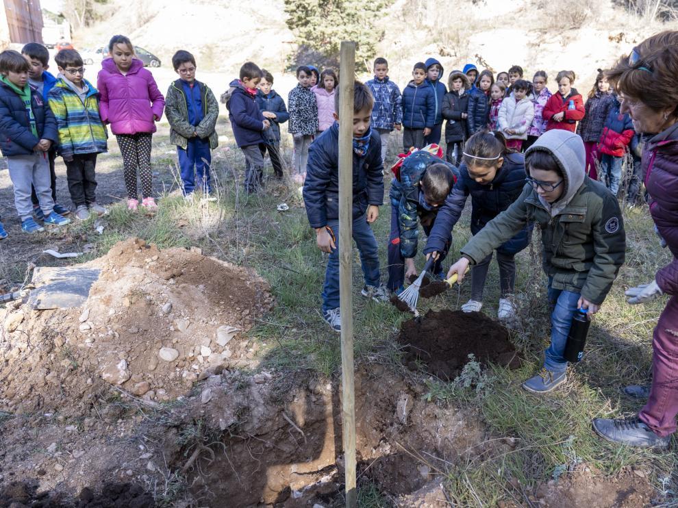 Alumnos de Primaria del colegio ensanche de teruel plantan un Olmo sin graciosis en la cuesta cofiero. Foto Antonio Garcia/bykofoto. 26/02/20 [[[FOTOGRAFOS]]]