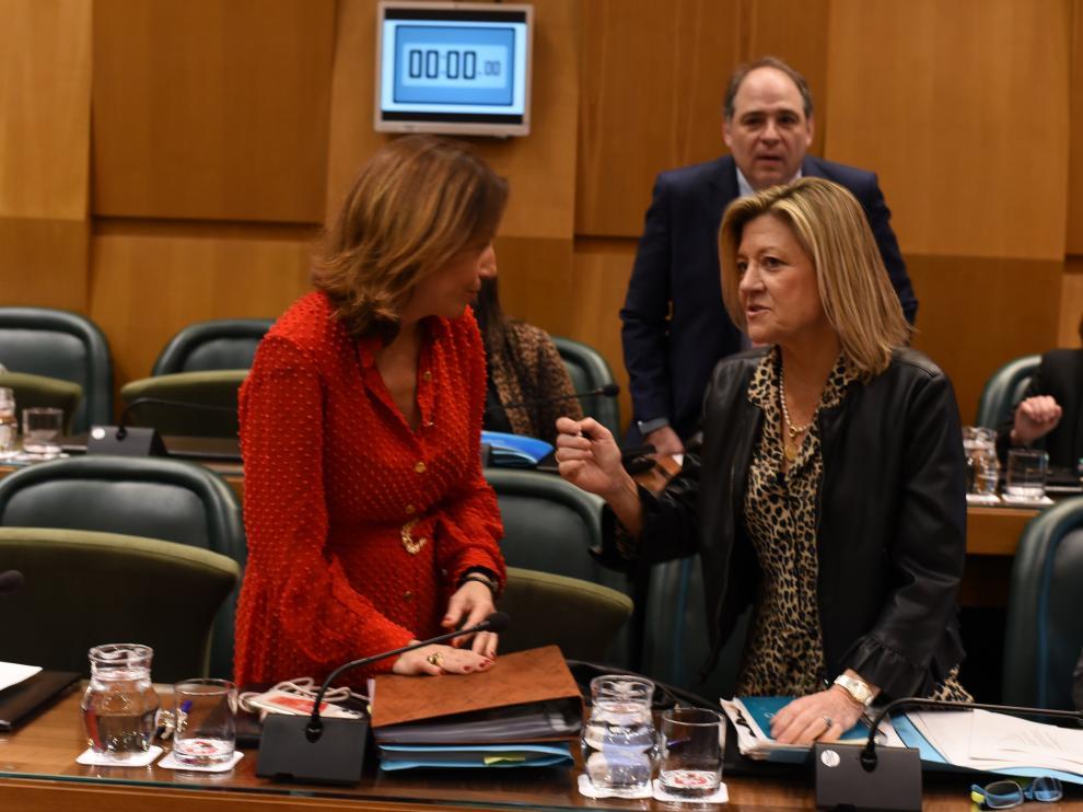 Natalia Chueca, concejal de Servicios Públicos, en el pleno municipal de este viernes