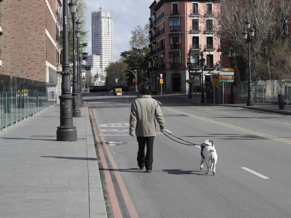 Un hombre pasea a su perro este domingo por una céntrica calle de Madrid.