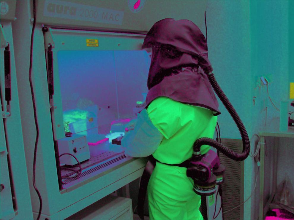 Un virólogo trabaja en el estudio del patógeno en un laboratorio de salud pública de la UE.