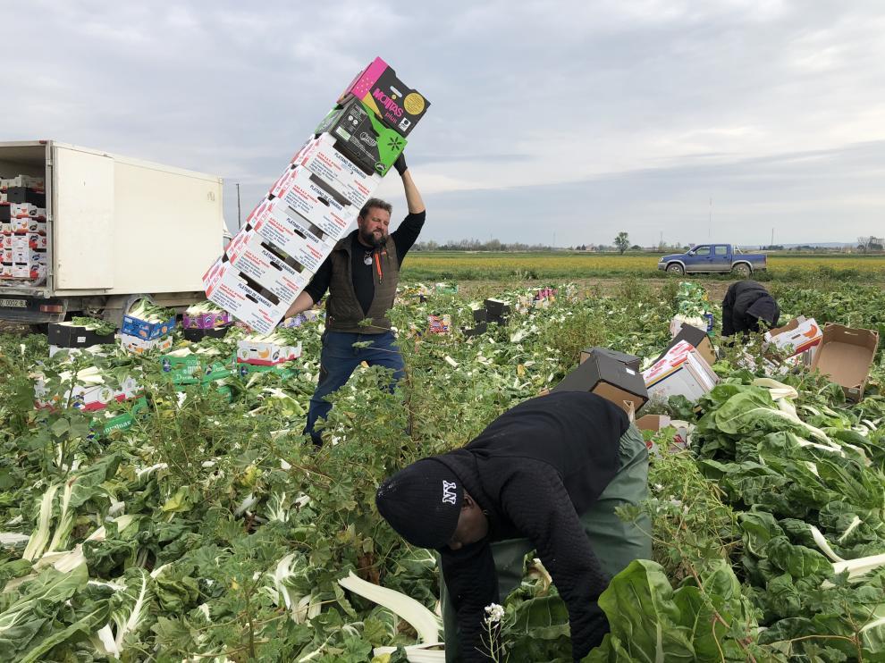 Cristobal Omedes, cargando las cajas y dos de sus trabajadores