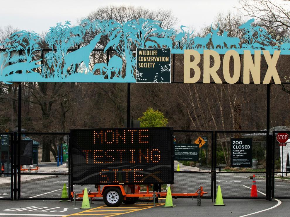 Zoo del Bronx, en Nueva York, donde han detectado el virus en cuatro tigres y tres leones.