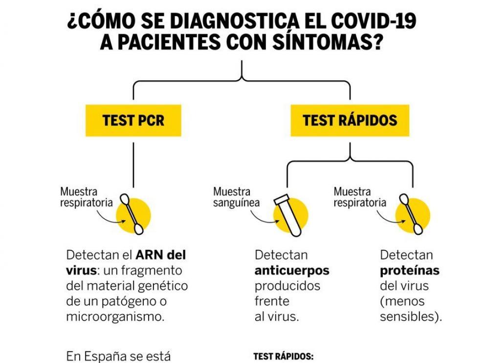 Diferencia entre el PCR y el test rápido para detectar el coronavirus