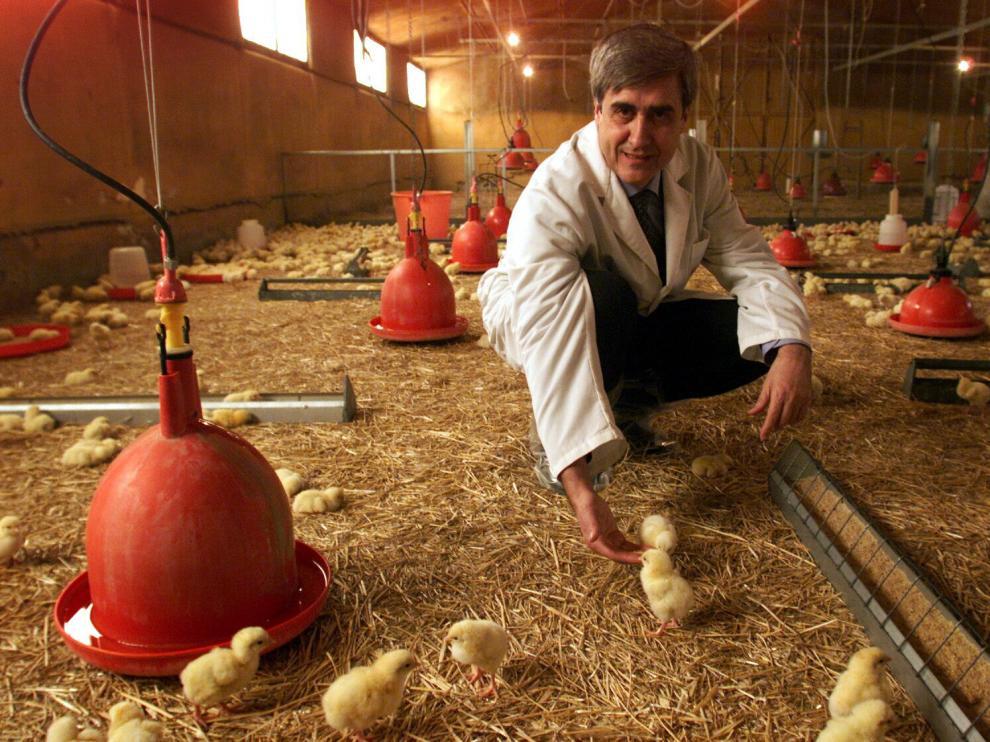 Juan José Badiola, rodeado de pollitos en la Facultad de Veterinaria, en una imagen de febrero de 2004