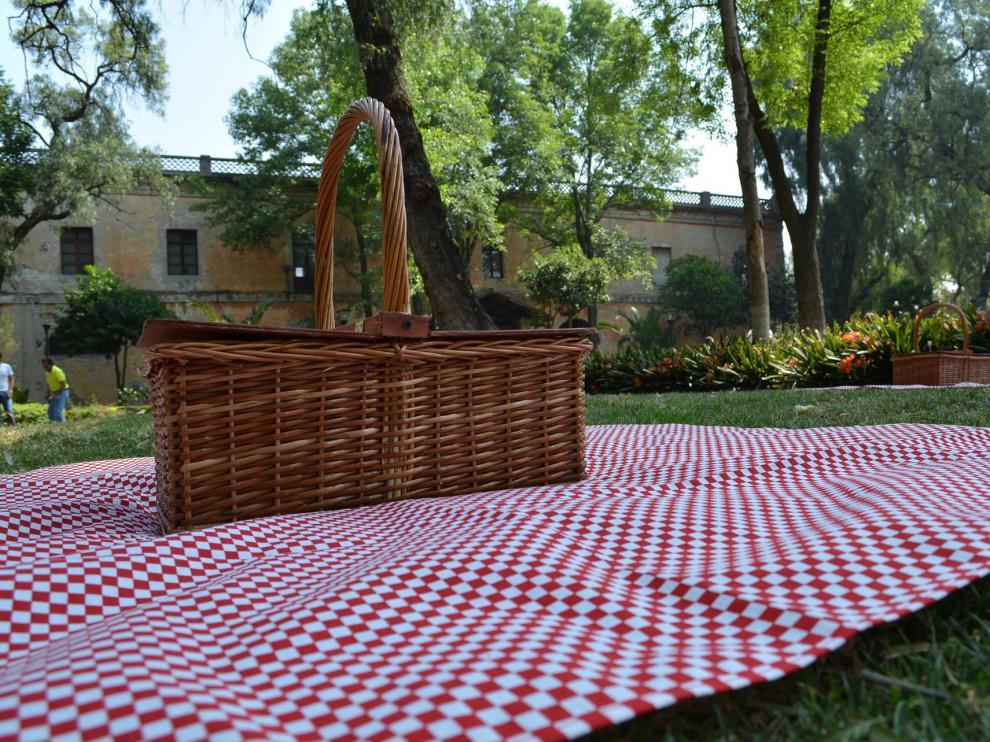 Dulces, embutido, tortilla de patata...¿qué tendrá tu picnic perfecto?