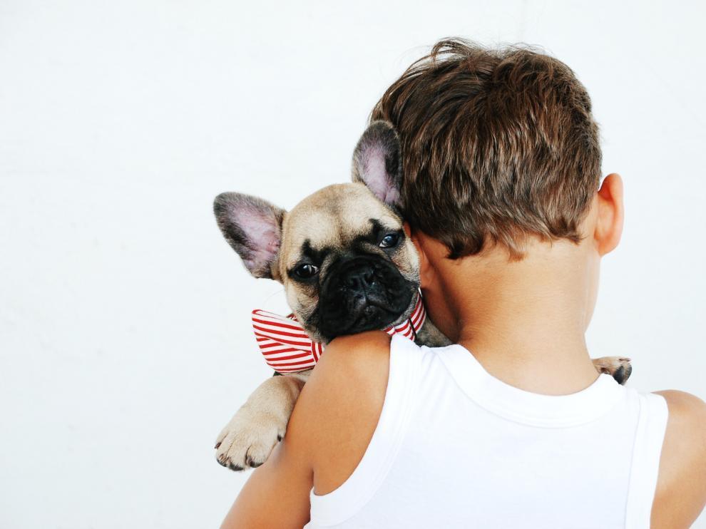 El vínculo que se crea entre las mascotas y los niños les obliga a asumir responsabilidades y a aprender valores como el respeto.