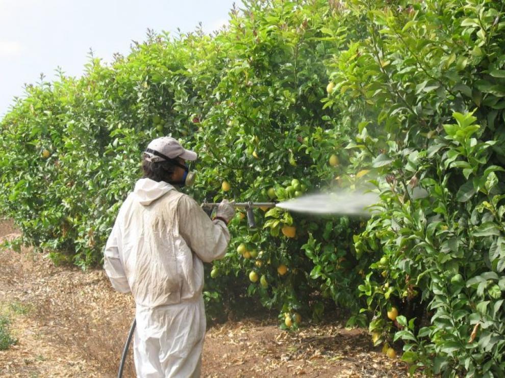 Un trabajador aplica fungicidas en una explotación de la Comunidad.
