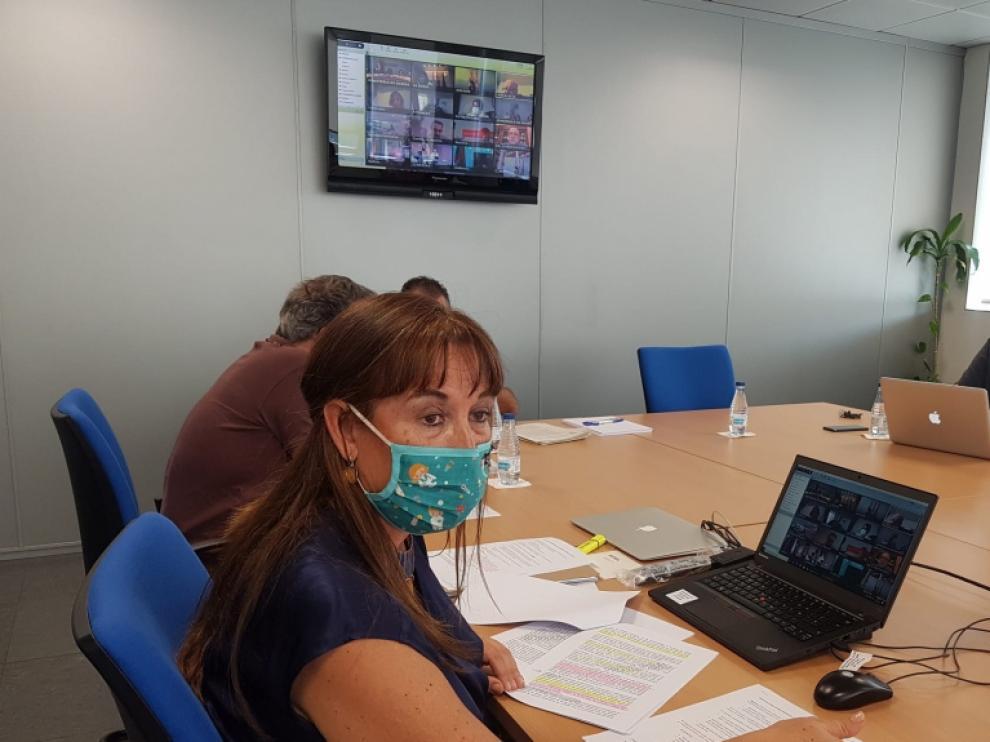 Sira Repollés, ayer durante la reunión telemática del Consejo Interterritorial de Salud
