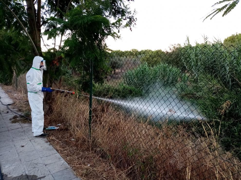 Municipios cercanos al brote aumentan la fumigación por el virus del Nilo