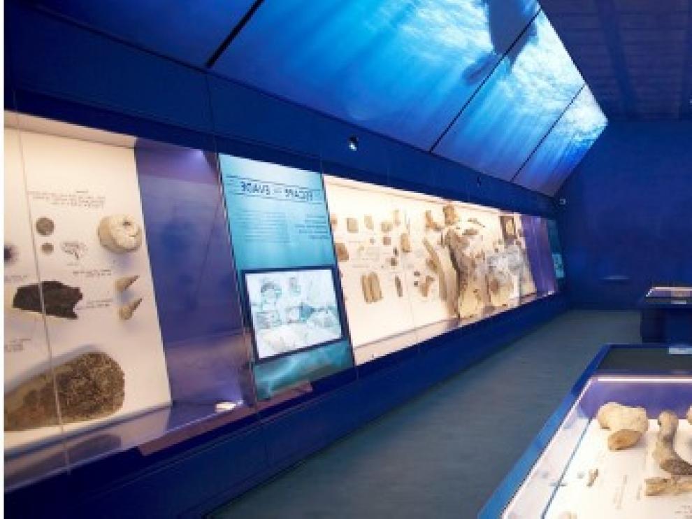 Recreación infográfica de la sala museo incluida en la nueva atracción del Mar Jurásico.
