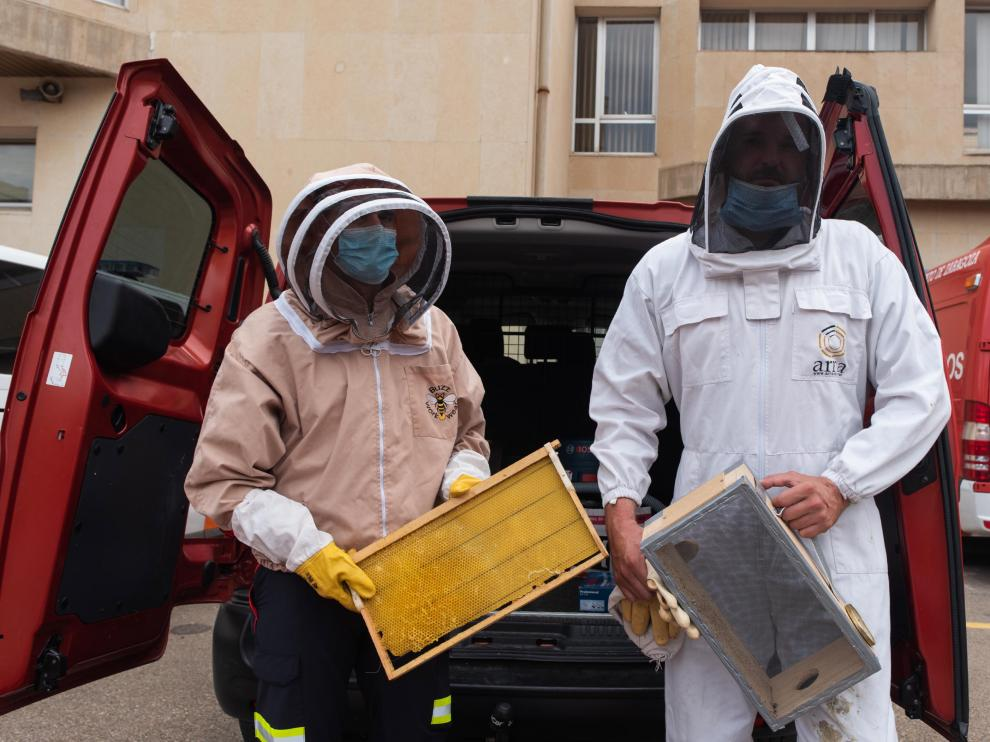 Bomberos equipados con caretas y trajes protectores contra las picaduras de abejas, en el parque de Valle de Broto.