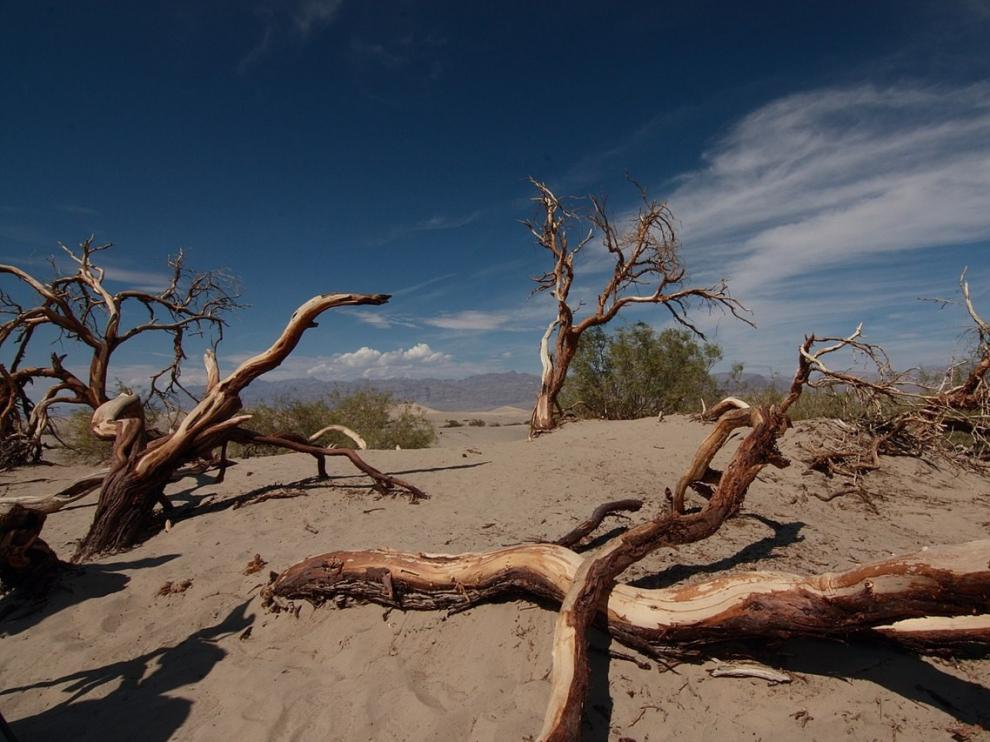 Valle de la Muerte, en California, donde se registraron 54,4 grados el pasado 16 de agosto.
