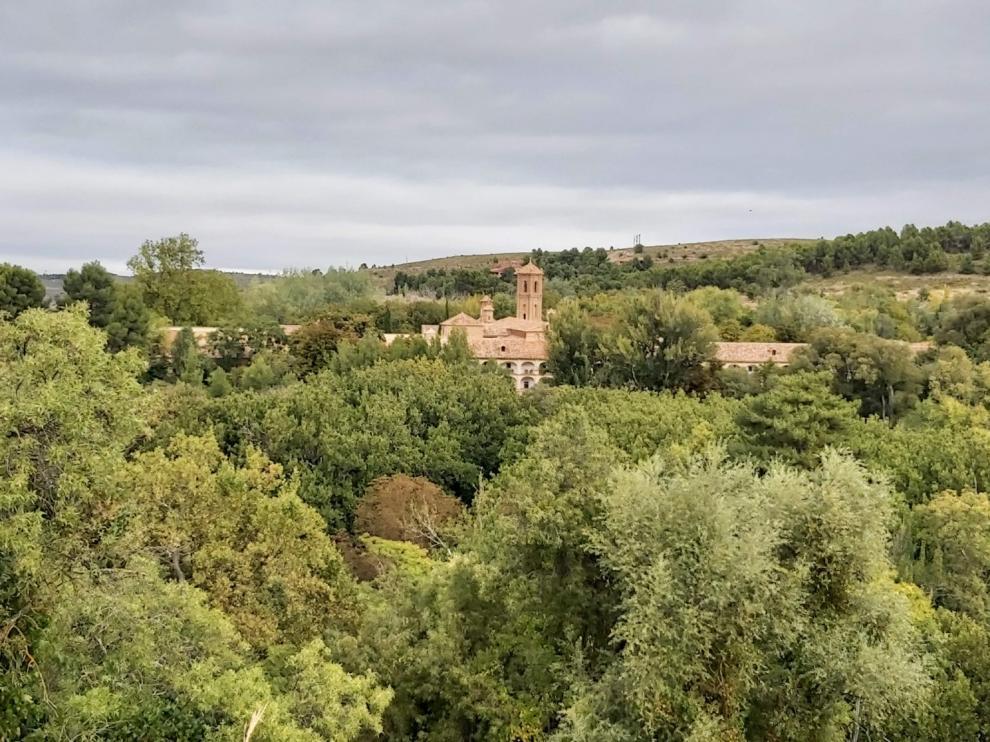 Árboles en el Monasterio de Piedra.