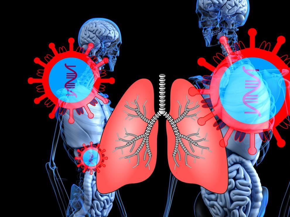 El coronavirus afecta a los pulmones, pero también puede causar decenas de otros síntomas