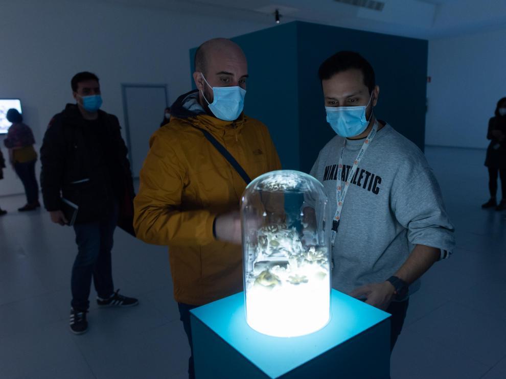 PRESENTACION DE LA EXPOSICION VISIONARIAS Y BALANCE ANUAL EN EL CENTRO ETOPIA DE ZARAGOZA / 21-01-2021 / FOTOS: FRANCISCO JIMENEZ[[[FOTOGRAFOS]]]