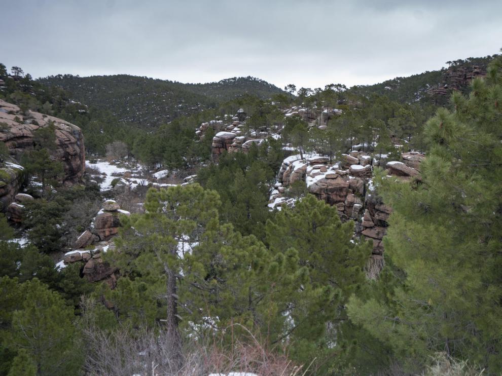 Paisajes nevados en Teruel. Pinares del Rodeno en la Sierra de Albarracin