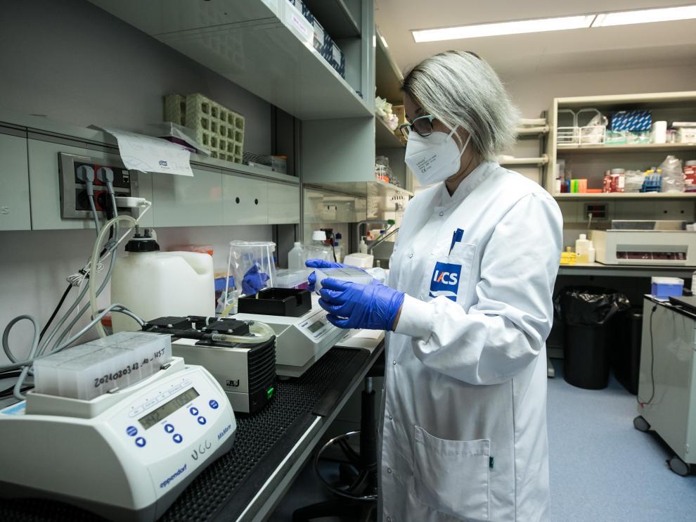 Fotos del laboratorio satélite del CIBA en Zaragoza donde se rastrea la cepa británica del coronavirus