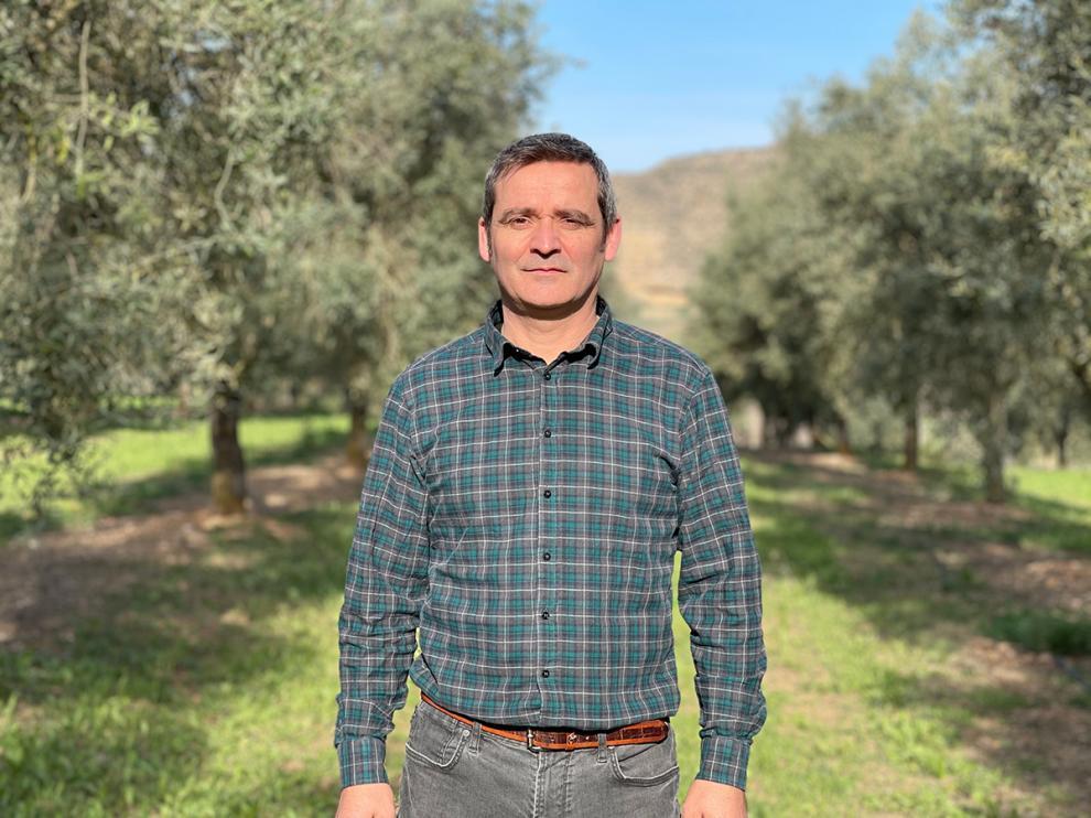 Carlos Aznar se dedica a los olivos desde hace 25 años