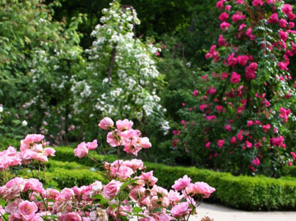 Chanel restaurará la rosaleda del Jardín Botánico de Madrid