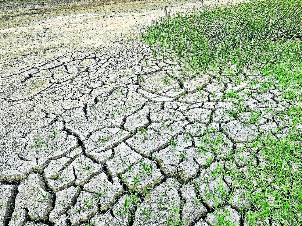 Los periodos de fuerte sequía, muy visibles en los suelos agrícolas, son cada vez más habituales.