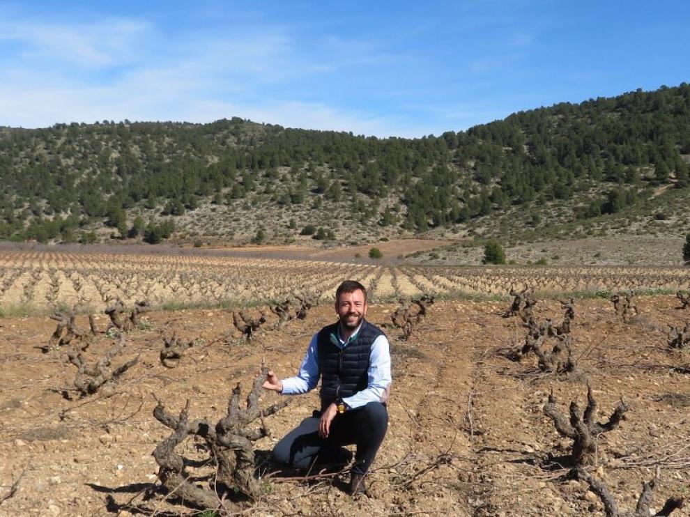 Carlos Vázquez, fundador de Bodegas.bio, en los viñedos de una de las bodegas del proyecto.