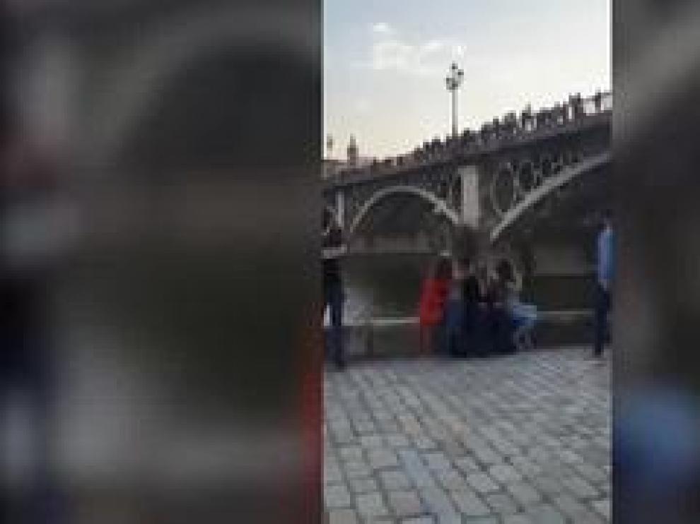 Hasta cuatro jóvenes se han lanzado al río desde el puente de Triana, un serio peligro con multa