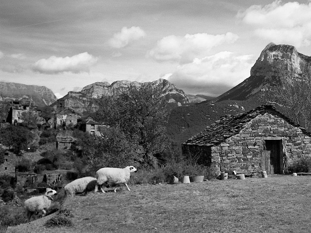 El paisaje del Pirineo aragonés es protagonista destacado en 'Armugán'.