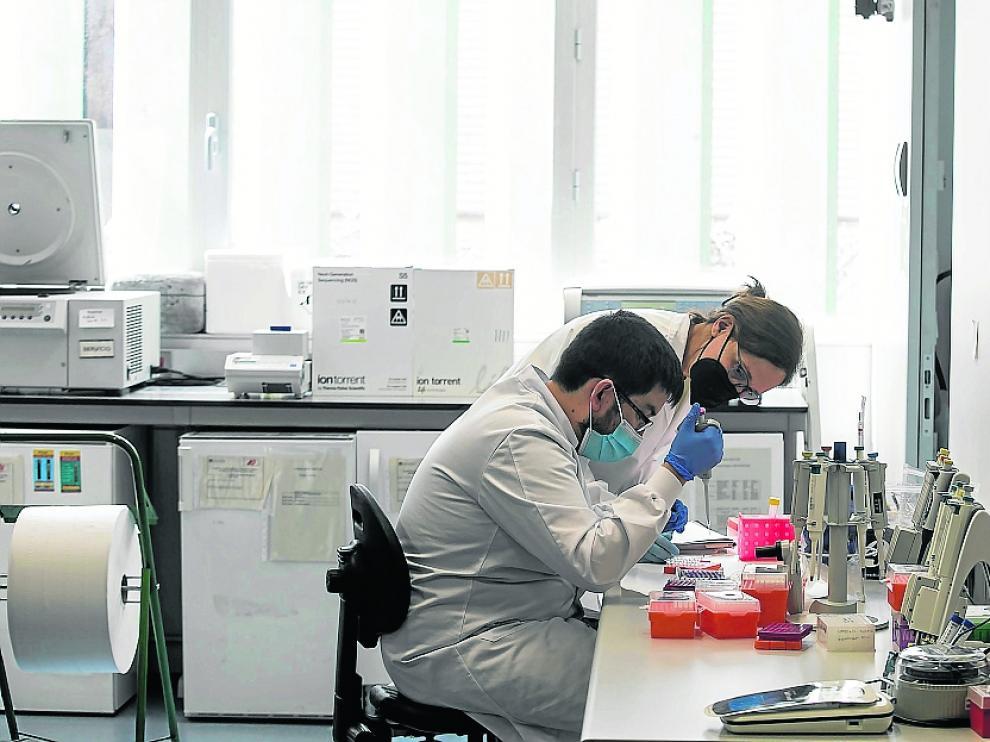 Los trabajadores del laboratorio satélite, en las instalaciones del centro de Investigación.